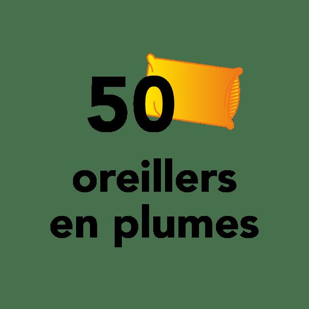 50 oreillers en plumes