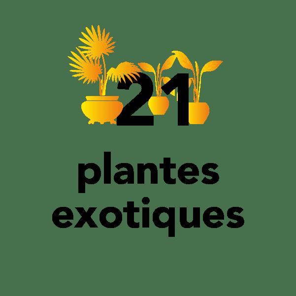 21 plantes exotiques