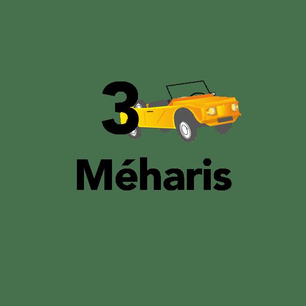 3 méharis